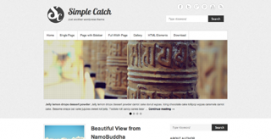 Simple Catch WordPress Popular Theme